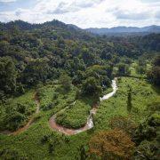 """Em Honduras, """"cidade perdida"""" é explorada depois de 500 anos totalmente isolada"""
