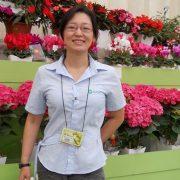 Engenheira agrônoma orienta sobre os cuidados no cultivo de orquídea em casa