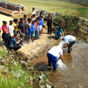 UMC atua na preservação e reprodução de diversas espécies de peixes da bacia do Alto Tietê